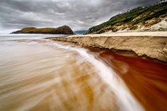 Tanins---Lion-Rock---South-Cape-Tasmania---Wilkography
