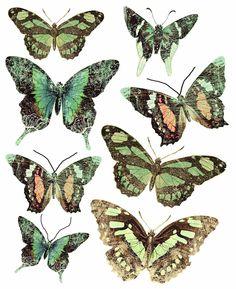 Free Printables. Scrapbook Butterflies.