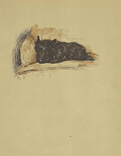 STOREWIDE SALE!!! ~ Use code TOOHOT for 20% off everything in our shops (7/24 thru 7/31).  This is an ORIGINAL book plate from the 1930s by the famous English illustrator, Lucy Dawson. It is a beautiful black and white portrait of a cute cairn terrier. The large page measures 11 tall and 8 wide, and is 75+ years old. It is on dark tan stock.  The reverse is pictured in the second image, and could also be framed.  CURIOUS ABOUT THIS SHOP? http://www.etsy.com/shop/...