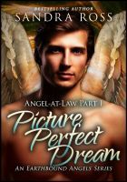 Picture Perfect Dream (Angel-at-Law 1), an ebook by Sandra Ross at Smashwords