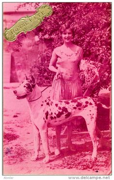 Great Dane Grand Danois Dogge Dogue Allemand Femme Hunde, Cane Old Dog Postcard. cpa.