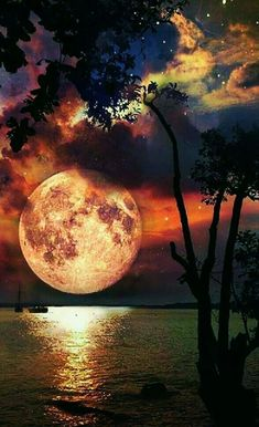 Photography Discover Natural landscape at night. Beautiful World Beautiful Places Beautiful Scenery Beautiful Sunset Amazing Places Shoot The Moon Amazing Nature Night Skies Sky Night Beautiful Moon, Beautiful World, Beautiful Places, Beautiful Scenery, Amazing Places, Shoot The Moon, Moon Art, Nature Pictures, Sea Pictures