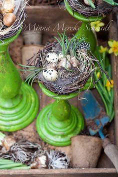 candlestick nests