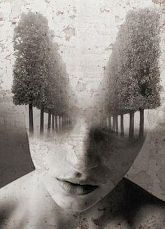 Antonio Mora. Where Dreams Will Take You