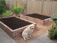ideas on what to do with remaining bricks from house build - Google Search