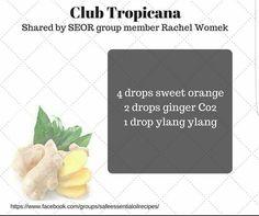 Club Tropicana diffuser blend: orange,  ginger,  ylang-ylang essential oils