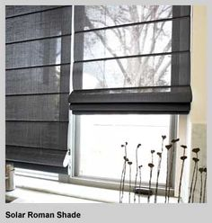 Custom Window Treatments, Blinds, Shades, Curtains & Shutters from Smith & Noble Window Coverings, Window Treatments, Smith And Noble, Solar Shades, Black Windows, Roman Blinds, Rice Paper, Guest Room, Porch