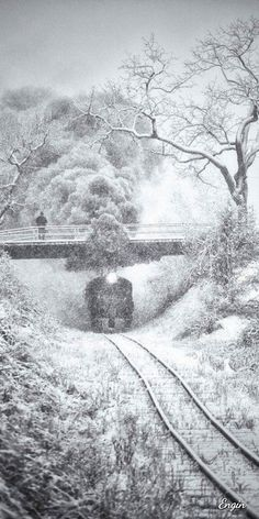 Steam train passing under a bridge in a snowy landscape Winter Pictures, Cool Pictures, Train Art, Old Trains, Winter Scenery, Snow Scenes, Winter Wonder, Steam Locomotive, Train Tracks