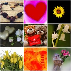 "Motivation Mondays: Mother's Day - A Collage of Mothers "" Sometimes the strength of motherhood is greater than natural laws."" Barbara Kingsolver #motivation #love #mothersday #inspiration"