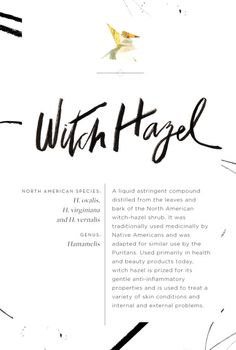 Bldg 25 Blog – The Free People Fashion & Inspiration Blog | Page 2