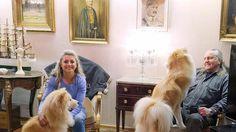 Kike ja Kimmo Elomaan olohuoneessa on muun muassa Mannerheimia esittäviä maalauksia.
