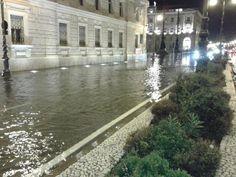 Trieste le Rive