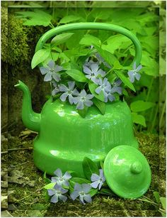 Green Kettle - suppose this must make green tea :)