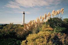 Les 9 choses incontournables à faire à Biarritz Wind Turbine, Tattoo, Gallery, Design, Best Surf Spots, Basque Country, Roof Rack, Tattoos
