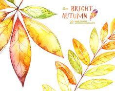 Bright Autumn. 28 Watercolor Elements handpainted clipart