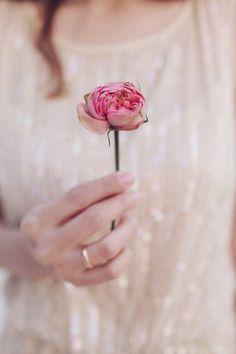 Pink Rosebud against a Gold Dress | Sonya Khegay