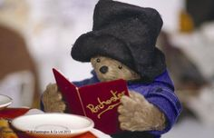 Paddington Bear enjoys a spot of reading! www.t-booth.net