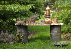 Beginner's guide to home distilling: how to make your own essential oils and hydrosols