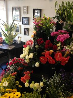 See 3 photos from 1 visitor to Shirley Hall Florist. Four Square, Floral Wreath, Wreaths, Plants, Home Decor, Floral Crown, Decoration Home, Door Wreaths, Room Decor