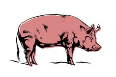 Pigs Cartoon Images - Clipart library