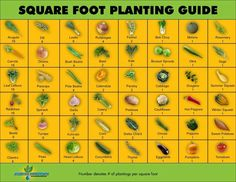 Square Food Garden Planting Guide (with number of plantings per square foot)