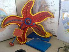 a 3-D model of a star fish