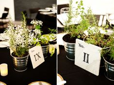 Modern Eco-Friendly Black and Green centerpieces // photo by Shang Chen Photography  #Wedding; #Rustic; #DIY; #Setting; #Venue; #Centerpiece