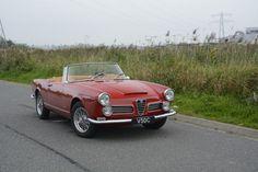 Te Koop: Alfa Romeo 2600 Touring Spider   Goldtimers