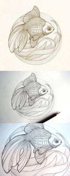 Ryukin Goldfish sketch by Catherine Noel