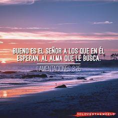Bueno es el Señor a los que en él esperan, al alma que le busca. Lamentaciones 3:25 #Jesús #Dios #Padre #EspírituSanto #Evangelio #Biblia #Amor #Vida #Ideas #Jesusontheweb #solovedtheworld