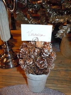 Pine Cone placecard holders at B.D. Jeffries in Morrison