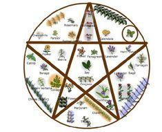 Wiccan Herb Garden