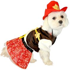 I pinned this Cowgirl Dog Costume from the Halloween Tricks & Treats event at Joss and Main!