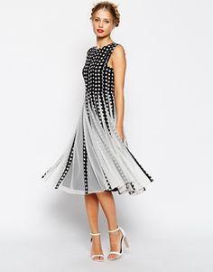 Spot Mesh Insert Fit And Flare Midi Dress