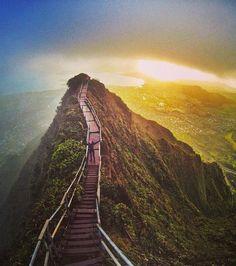Voici l'Escalier du Paradis situé sur une île d'Hawaii. Vous devrez grimper 3 922 pour atteindre le sommet de ce spot historique
