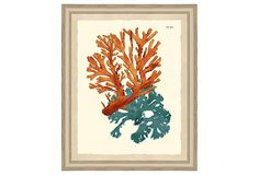 Love the color combo, great for a guestroom above a nightstand. Teal and Orange Coral Print III on OneKingsLane.com