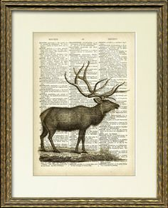 Bull Elk Dictionary Page Print - an antique dictionary page with an antique elk illustration - striking vintage home decor