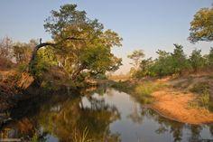 Afrikascout -  Landschaft im Chizarira NP Safari, Namibia, Country Roads, River, Outdoor, Zimbabwe, National Forest, Landscape, Nature