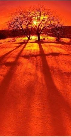 ♥Orange sunset♥
