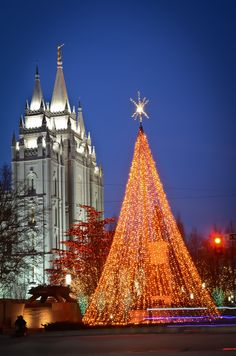I love Christmas time at Temple Square, Salt Lake City, Utah. A great family tradition to go every year! Christmas In America, Merry Christmas To You, A Christmas Story, Christmas Lights, Christmas Ideas, Beauty Around The World, Around The Worlds, Visit Utah, Temple Square
