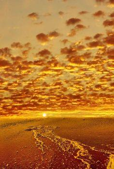 My golden shores...