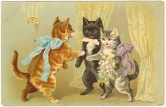 Cats on old postcards :: Funny cats eyes of artists Cute Cats And Kittens, Cool Cats, Victorian Crafts, Cat Wedding, Cat Cards, Greeting Cards, Cat Tattoo, Vintage Cards, Vintage Postcards