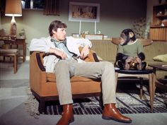Kurt Russell and Monkey in The Barefoot Executive (1971)