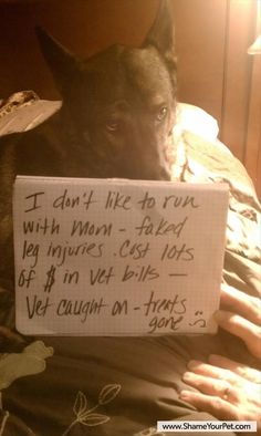 """I dont like to run with mom - faked leg injuries.. Cost lots of $ in Vet bills - Vet caught on - treats gone :( """