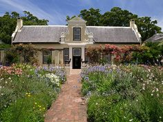 Cape Dutch house: love the flower field right up to the house; have to push it back a little where we have unwelcome critters that might live in the flowers.