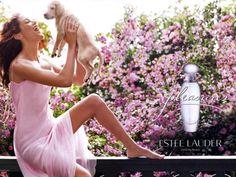 Desktop Wallpaper-s > Brands > Pleasures EDP Perfume for Women by Estee Lauder
