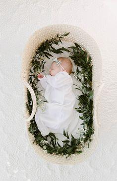 moses basket newborn photos