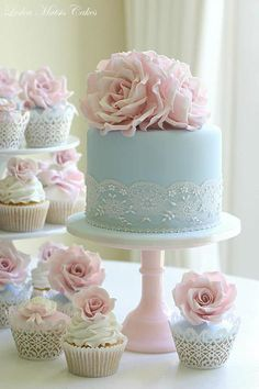 Pretty Cake and Cupcakes