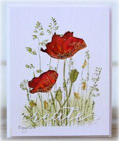 #Rapport från ett skrivbord: Shaker card | #Penny_Black Nature´s Paintbrushes + Blooming Garden + Field of Dreams + Inspire (on cards 4 + ims +)
