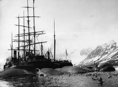 old whaling ship - Google Search